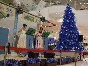 popuri2007.12.19.inYao_Ario.JPG